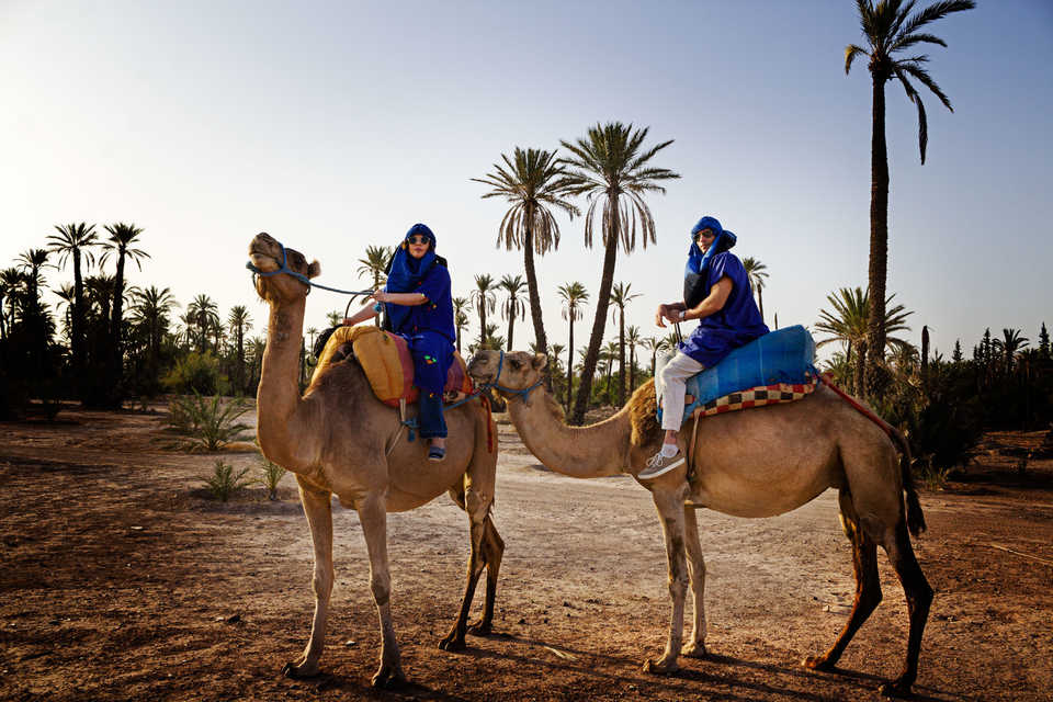Half Day Sunset Camel Ride In The Palm Grove Of Marrakech