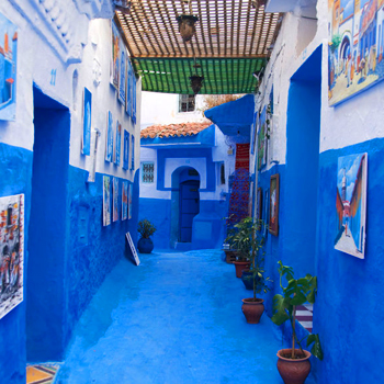 10 days tour from Marrakech to Chefchaouen via Fes and Casablanca